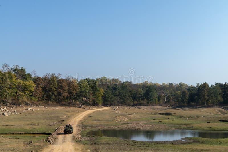 Waterbody und vehical Landschaft der Safari an Nationalpark Pench, Madhya Pradesh lizenzfreies stockbild