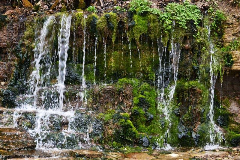 Waterbron, de lente, fontein, stroomafstraffing van een steenmuur die met groen mos wordt behandeld en gras stock afbeeldingen