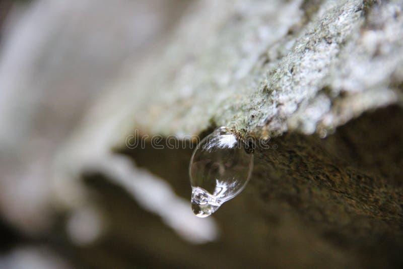 Waterbubble stockfoto