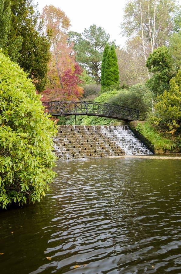 Watercascade in de Herfst stock fotografie