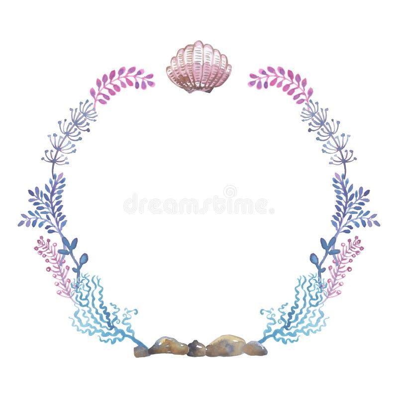 Watercolor γύρω από το πλαίσιο των κοχυλιών θάλασσας, απεικόνιση απεικόνιση αποθεμάτων