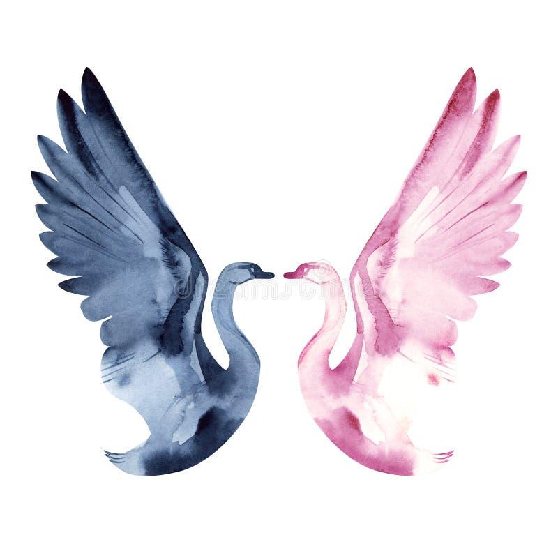 Watercolor δύο κύκνοι, ημέρα βαλεντίνων, αγάπη, ειδύλλιο Λίμνη του Κύκνου μπαλέτου στοκ εικόνα