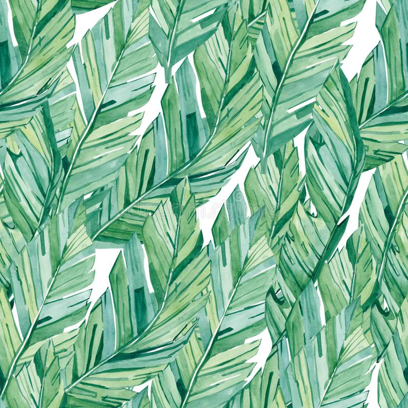 Watercolor άνευ ραφής φύλλα μπανανών σχεδίων τροπικά Τυπωμένη ύλη θερινής γοητείας για το υφαντικό ύφασμα διανυσματική απεικόνιση