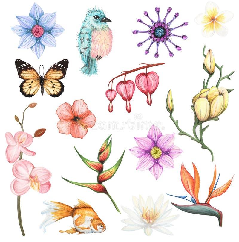 Watercolor που τίθεται με τα εξωτικά λουλούδια και το ζωικό στοιχείο διανυσματική απεικόνιση