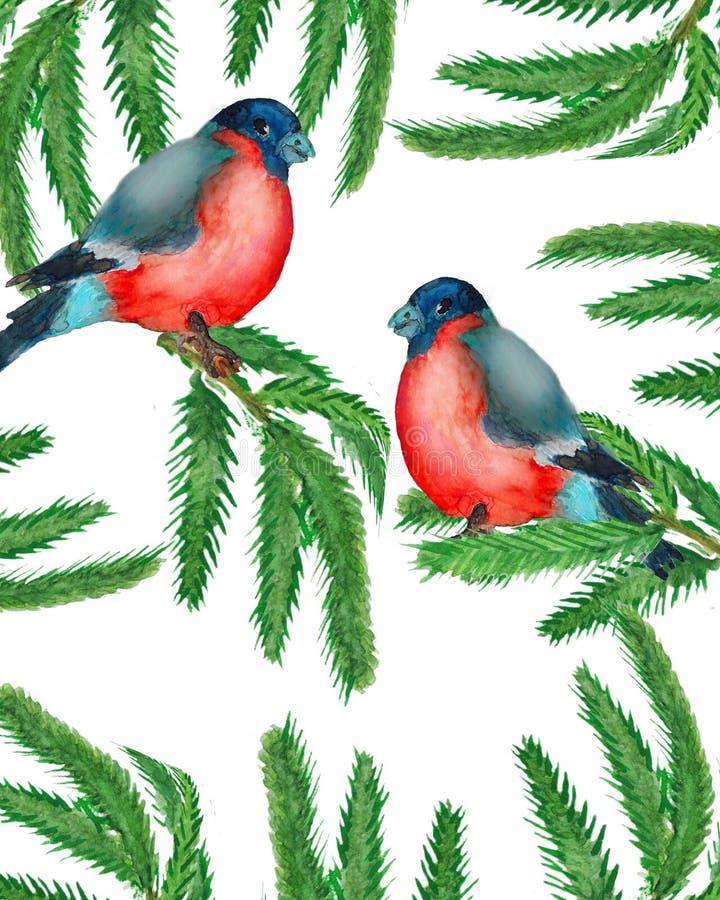 watercolor Στεφάνι Χριστουγέννων με τους κλάδους έλατου με δύο bullfinches απεικόνιση αποθεμάτων