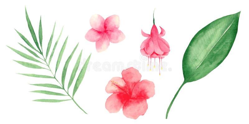 Watercolor που τίθεται με τα τροπικά φύλλα και τα λουλούδια απεικόνιση αποθεμάτων