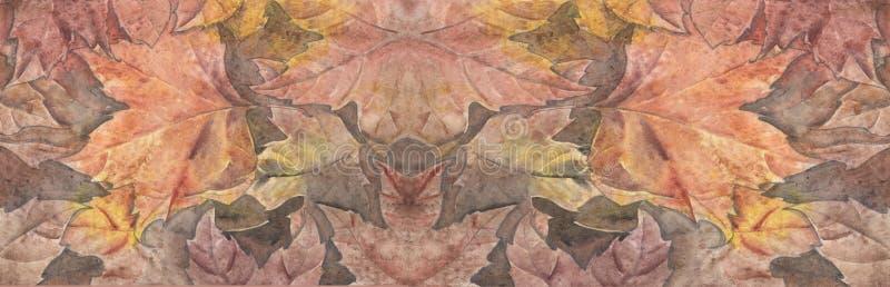 Watercolor φύλλων φθινοπώρου στοκ εικόνες με δικαίωμα ελεύθερης χρήσης