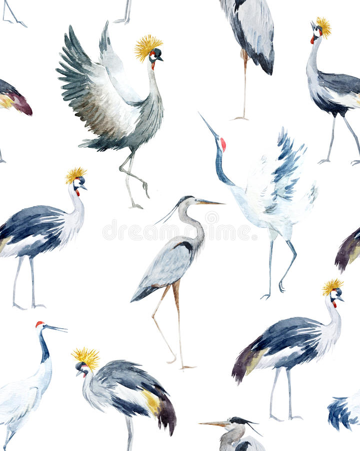 Watercolor african crane pattern royalty free illustration