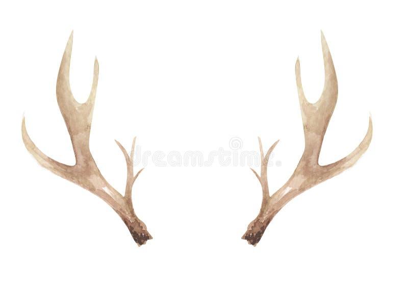 Watercolor Antlers Deer Bone Painted Neutral Horns Natural stock illustration