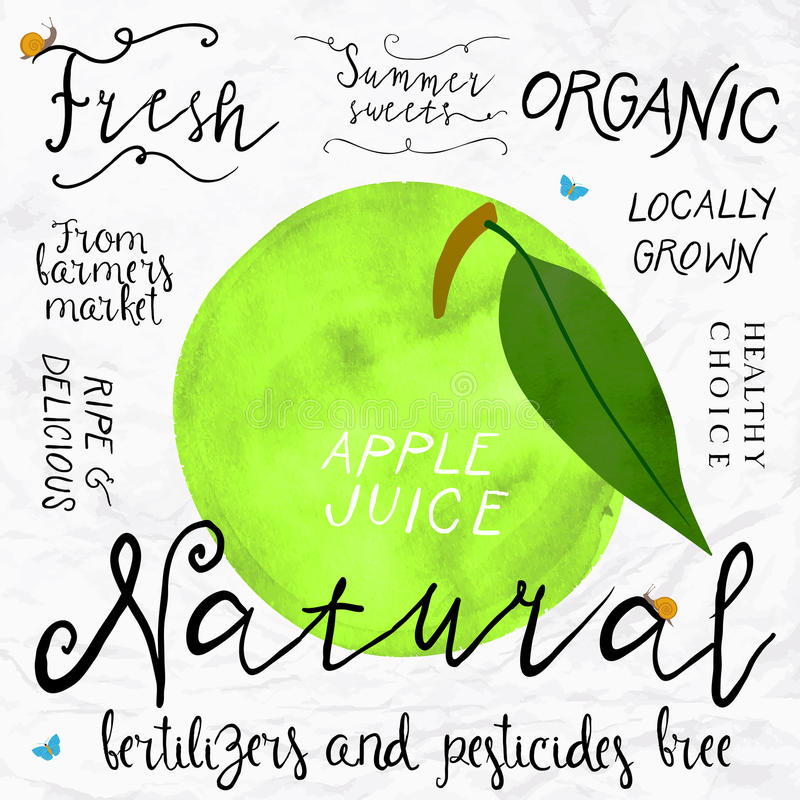 Watercolor apple. Vector illustration of green apple in imitation of watercolor, hand drawn in in 1950s or 1960s style. Concept for farmers market, organic food royalty free illustration