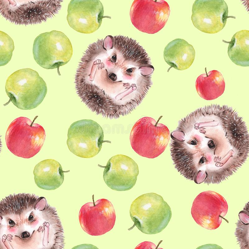 Watercolor apples, Seamless pattern with hedgehog royalty free illustration
