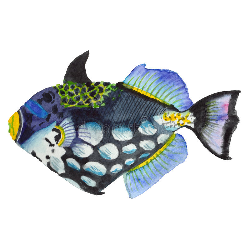 Watercolor aquatic underwater colorful tropical fish set. Red sea and exotic fishes inside. stock image