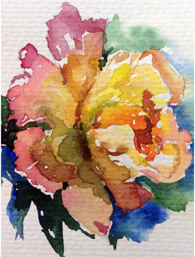 Watercolor art background nature fresh colorful yellow red tea rose flower single delicate romantic love. Art background abstract extruded in watercolor stock illustration
