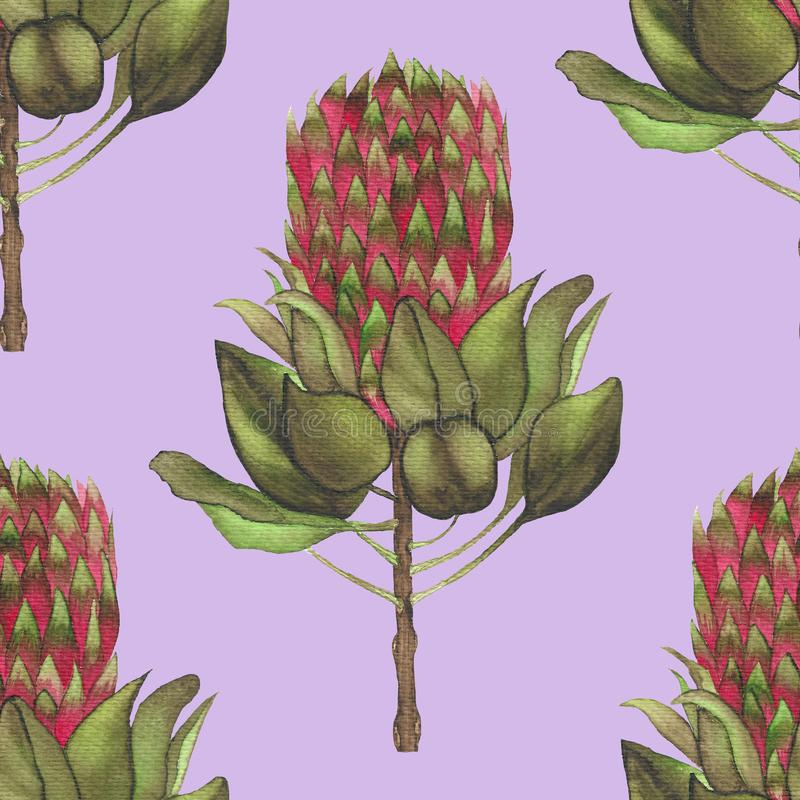 Watercolor artichoke vegetables  pattern for kitchen stock illustration