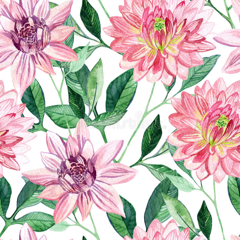 Watercolor aster seamless pattern vector illustration