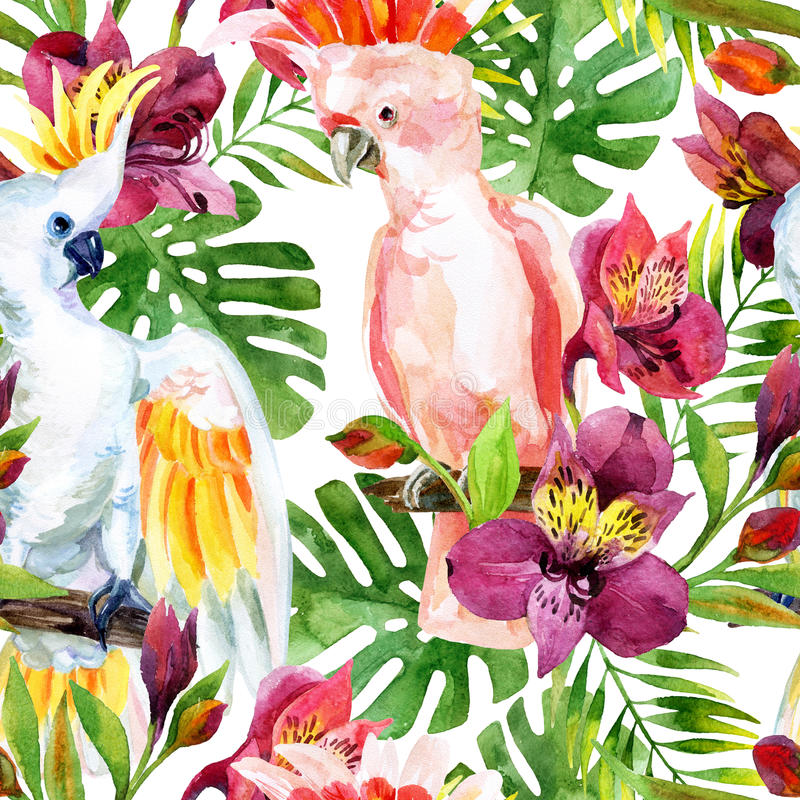 Watercolor Australian Cockatoo seamless pattern stock illustration