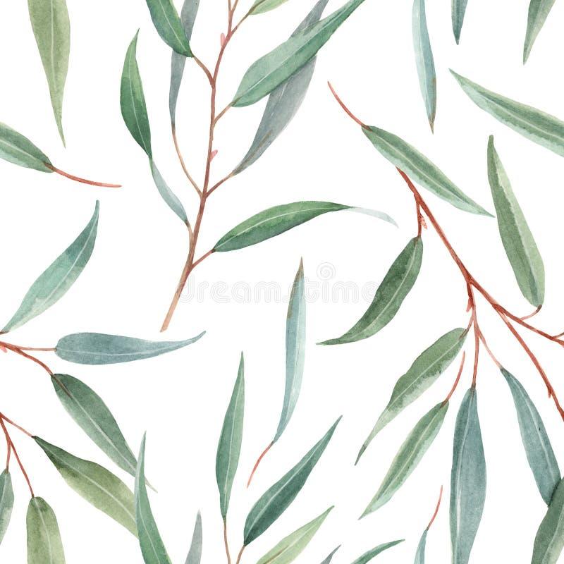 Watercolor australian floral pattern vector illustration