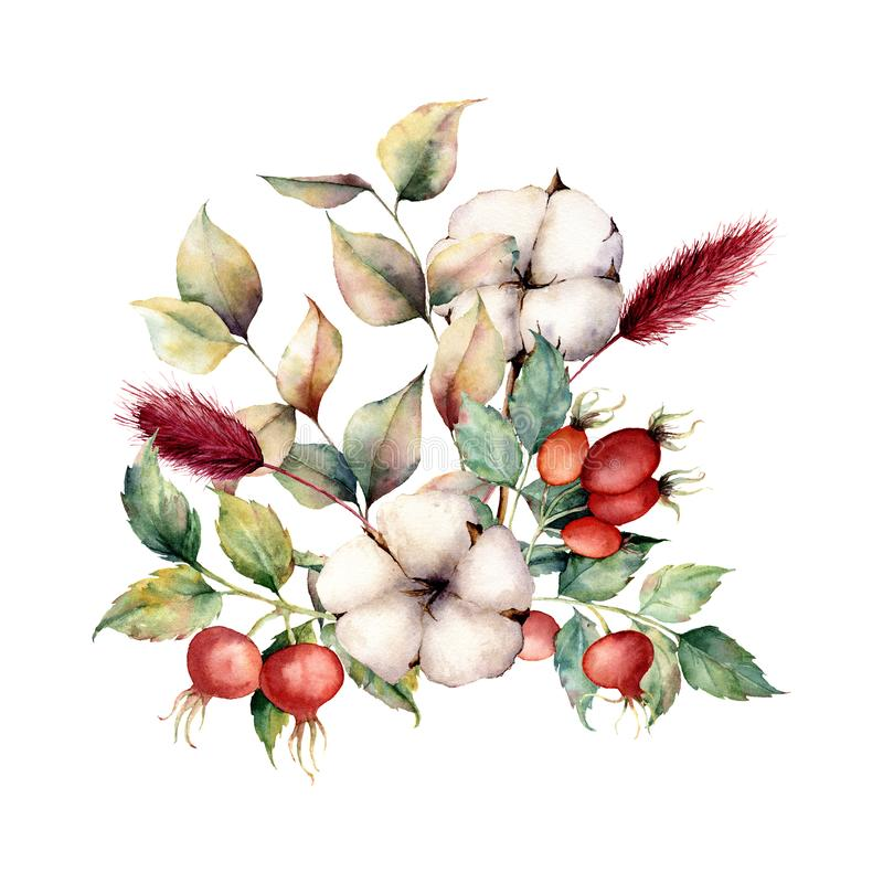 Free Watercolor Autumn Bouquet With Flowers And Plants. Hand Painted Dogroses, Cotton Flowers, Lagurus, Leaves And Branches Royalty Free Stock Photography - 125955717