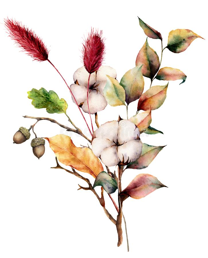Free Watercolor Autumn Bouquet With Plants And Flowers. Hand Painted Cotton Flowers, Lagurus, Acorn, Leaves And Branches Stock Photos - 126262073
