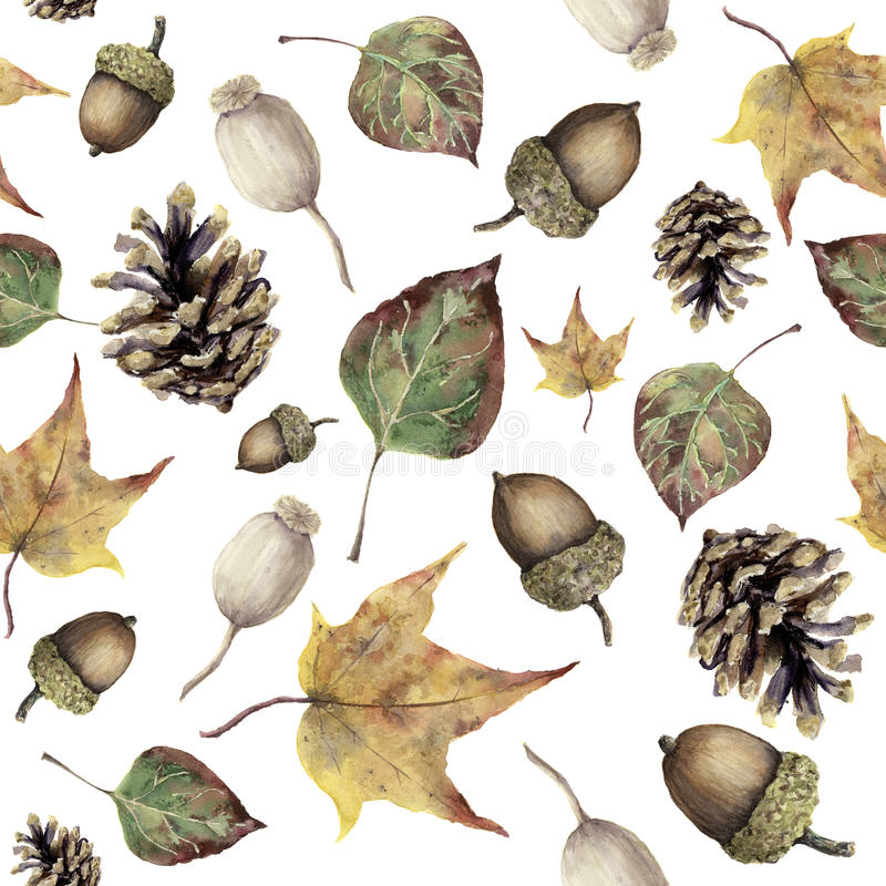 Watercolor autumn forest seamless pattern. Hand painted pine cone, acorn, berry and yellow and green fall leaves ornament isolated. On white background vector illustration