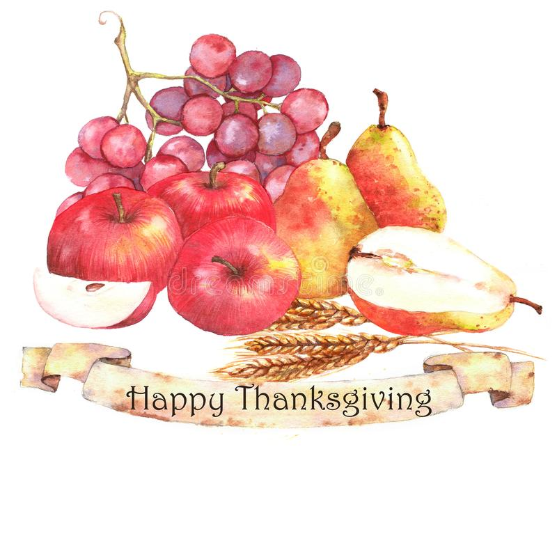 Watercolor autumn harvest. Isolated hand-drawn illustration of ripe fruits: pears, apples, bunch of grapes with ears of wheat. Thanksgiving day card template vector illustration