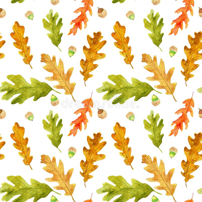 Watercolor autumn oak leaves seamless pattern royalty free stock images