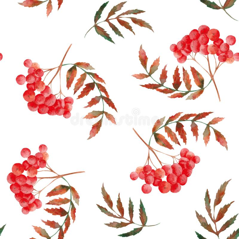 Watercolor autumn pattern with rowan, leaves, mushrooms, apples, cones, flowers and berries. NWatercolor autumn pattern with rowan, leaves, mushrooms, apples vector illustration