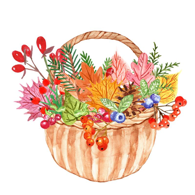 Watercolor autumn plants and leaves on white background. Colorful orange, yellow and red forest tree leaf with red berries stock illustration