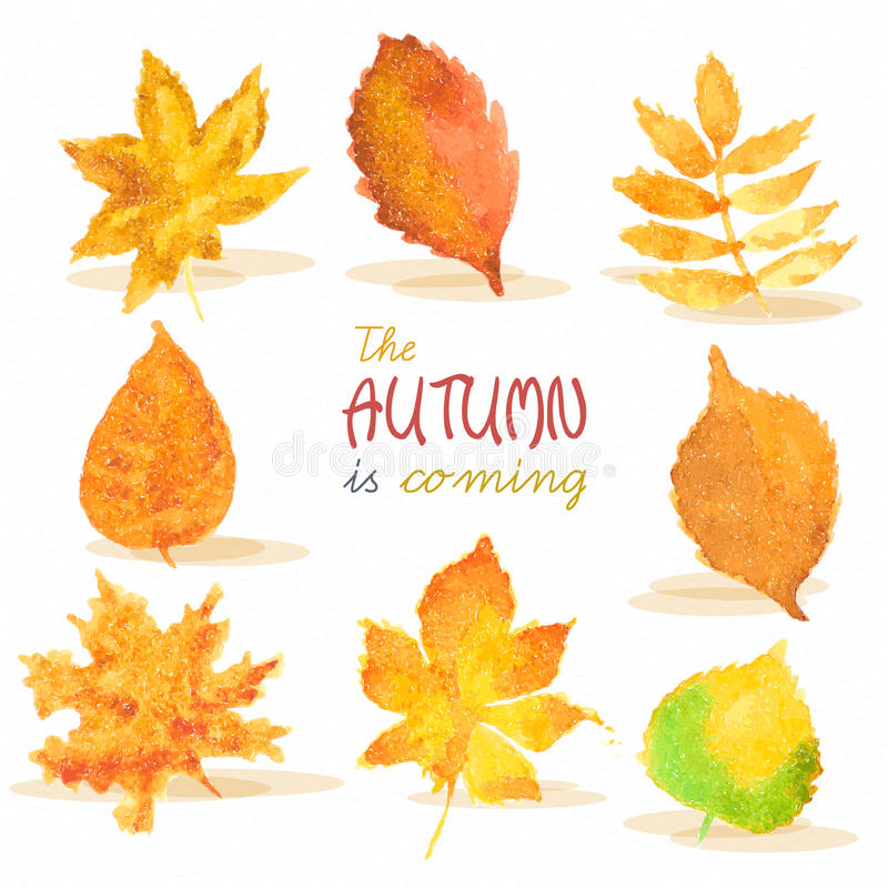 Free Watercolor Autumn Red, Yellow, Green Leaves On Royalty Free Stock Image - 44905936