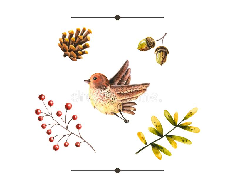 Watercolor autumn set of leaves, acorn, pine cone, flying bird, rowan. Illustration isolated on white. Hand drawn items vector illustration