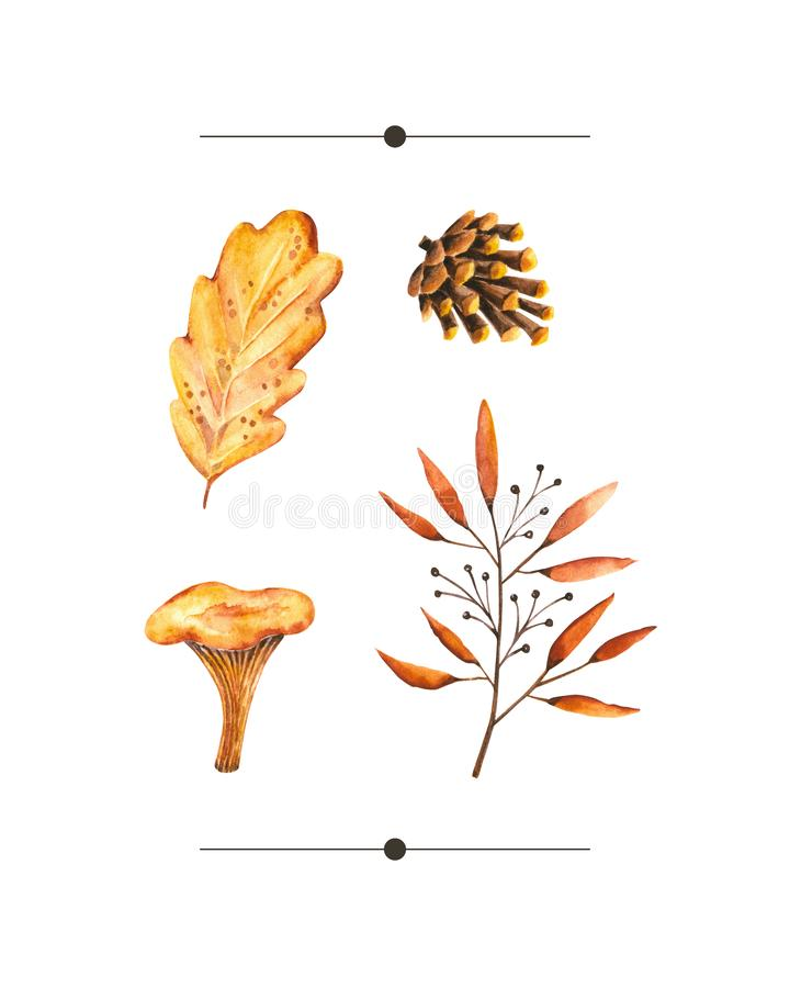 Watercolor autumn set of with watercolor sprigs, leaves, pine cone, mushroom. Illustration isolated on white. Hand drawn items. Perfect for vintage design, card vector illustration