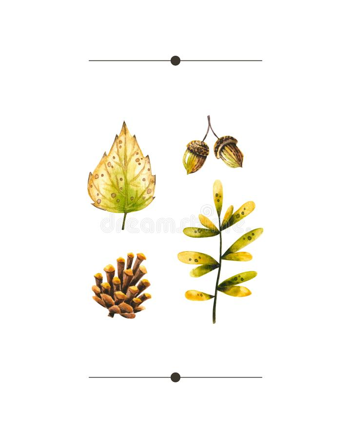 Watercolor autumn set of watercolor sprigs, leaves, pine cone, acorn. Illustration isolated on white. Hand drawn items. Perfect for vintage design, card, poster royalty free illustration