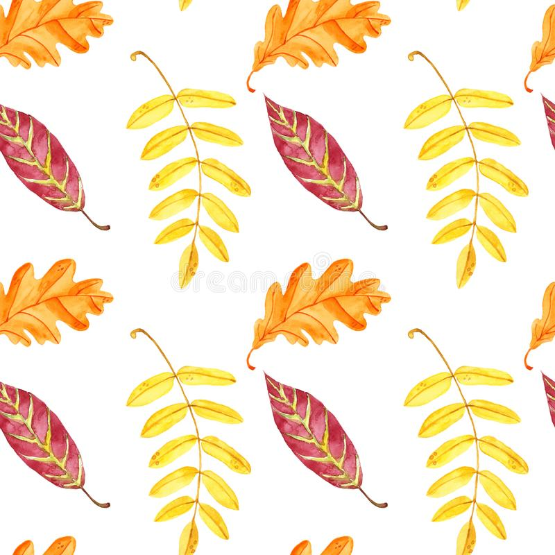 Watercolor autumn tree leaves seamless pattern. Hand painted colorful forest leaf on white background. Red, orange, yellow. Fall season seamless pattern with vector illustration