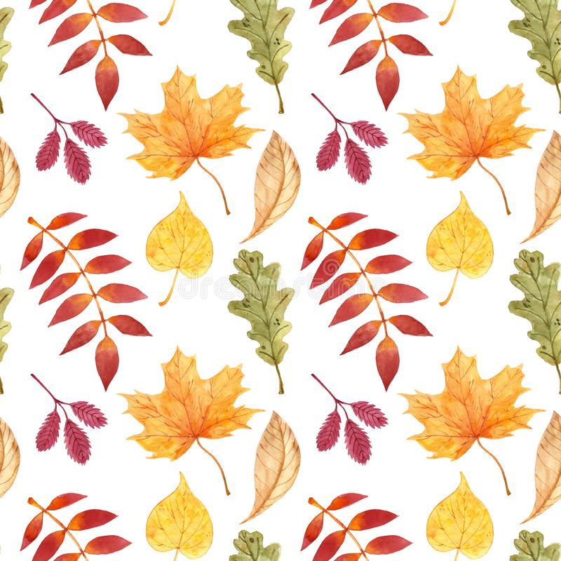 Fall season seamless pattern with watercolor isolated red, yellow, orange tree leaves on white background. Autumn backdrop stock illustration