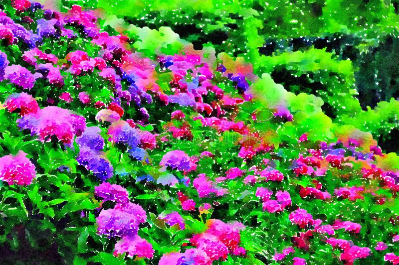 Pink and purple hydrangeas in the summer garden. Watercolor styling. royalty free stock photography