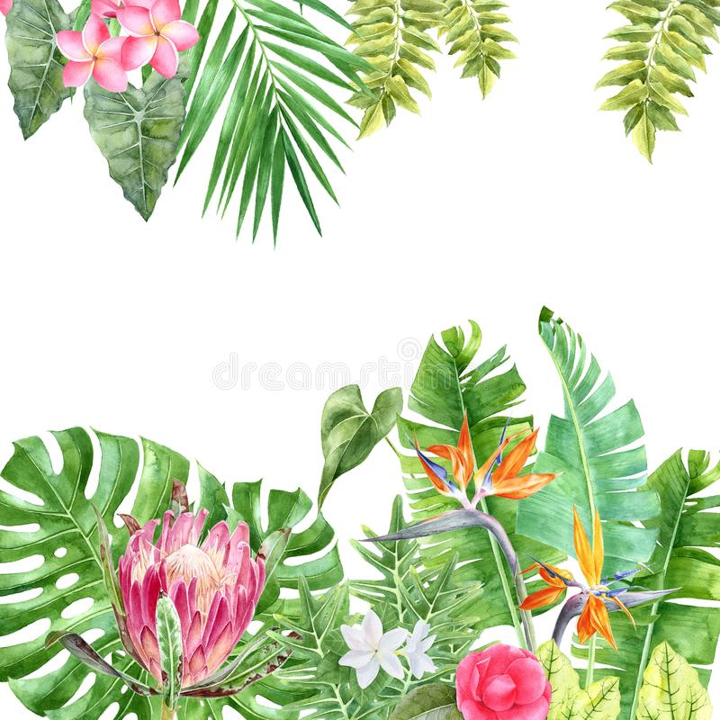 Watercolor background with tropical plants and flowers vector illustration
