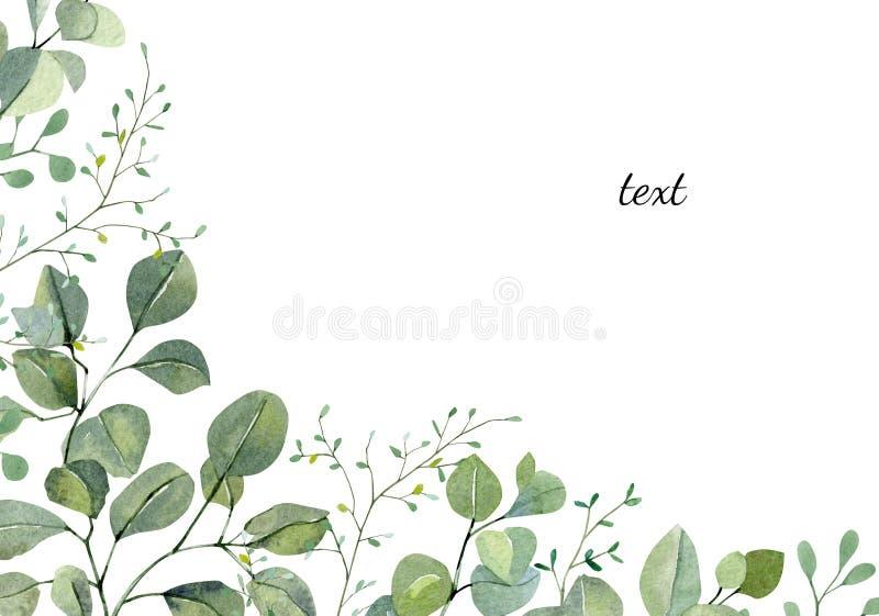 Eucalyptus Greenery Stock Illustrations 13 559 Eucalyptus Greenery Stock Illustrations Vectors Clipart Dreamstime