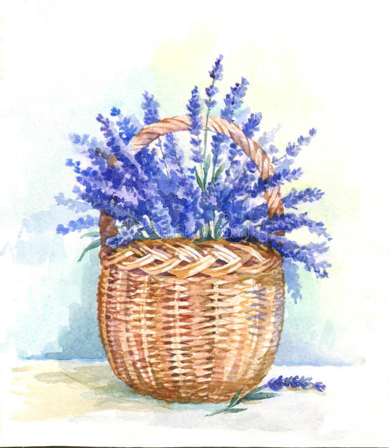 Watercolor basket with lavender royalty free illustration