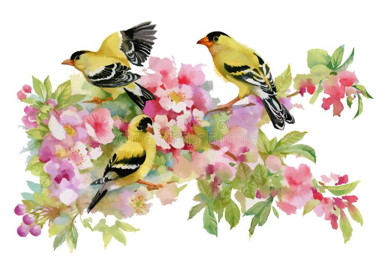Watercolor beautiful birds sitting on blooming branches. royalty free illustration