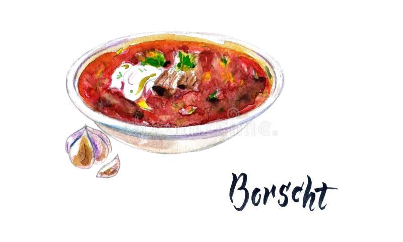 National Ukrainian beetroot soup. Watercolor beetroot soup. Hand drawn vector watercolor borsch with garlic, borscht with sour cream. Ukrainian cuisine. National vector illustration