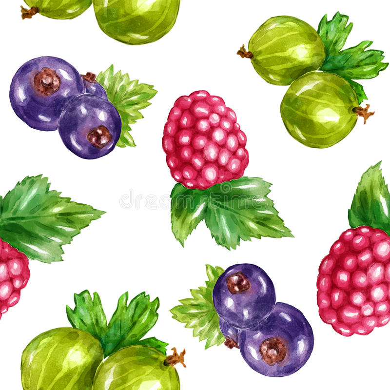Watercolor berries set with raspberry blueberry gooseberry vector illustration
