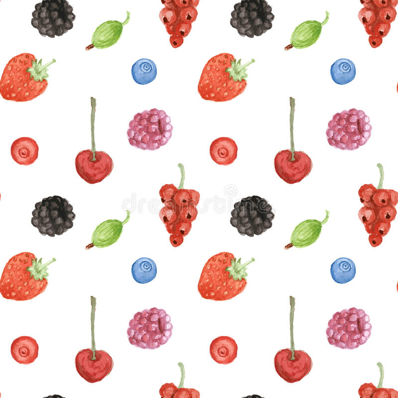 Watercolor berry in vintage style vector illustration