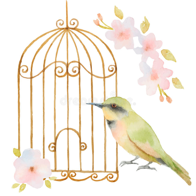 Watercolor bird, cage and flowers royalty free illustration