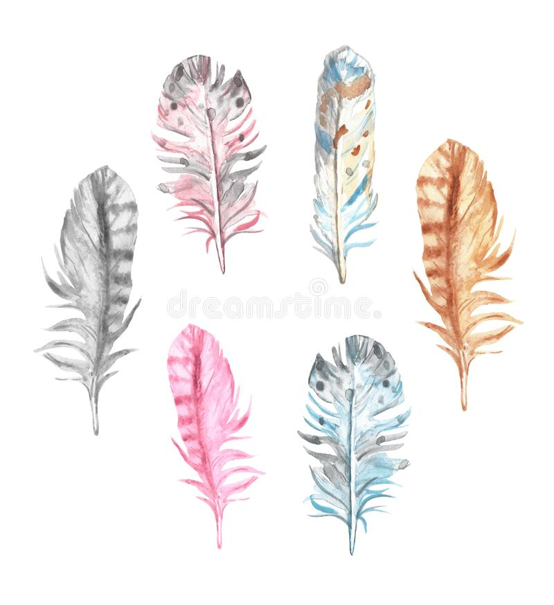 Watercolor bird feathers collection, isolated on white background. Hand drawn decorative exotic colorful decorative elements vector illustration