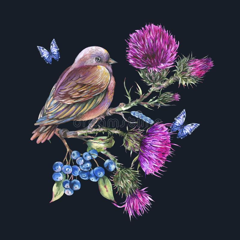Watercolor bird with thistle, blue butterflies, berries, wild flowers illustration, meadow herbs royalty free illustration
