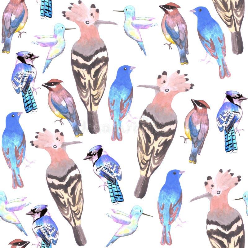 Watercolor birds in tetrad color scheme seamless background.  stock illustration
