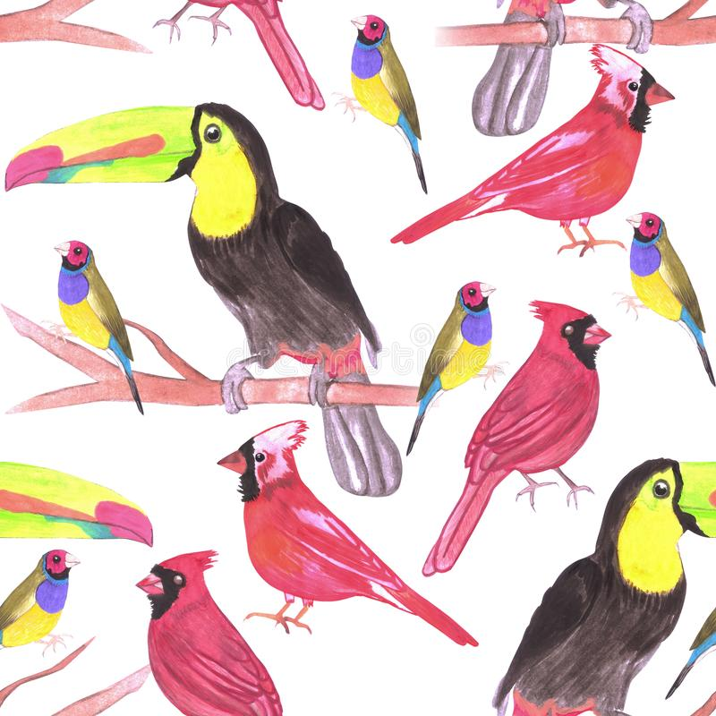 Watercolor birds in tetrad color scheme seamless watercolor background-green, yellow, red, blue.  stock illustration
