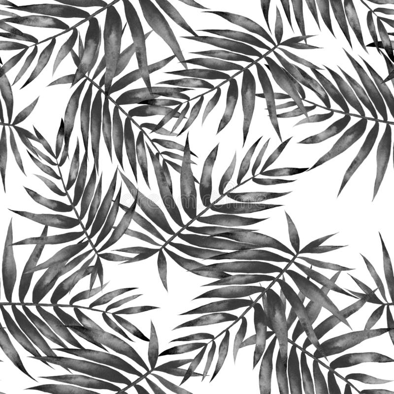 Watercolor black white tropical leaves pattern vector illustration