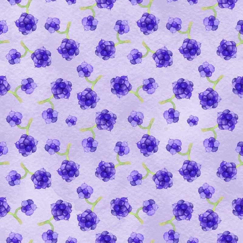 Watercolor blackberry seamless pattern royalty free illustration