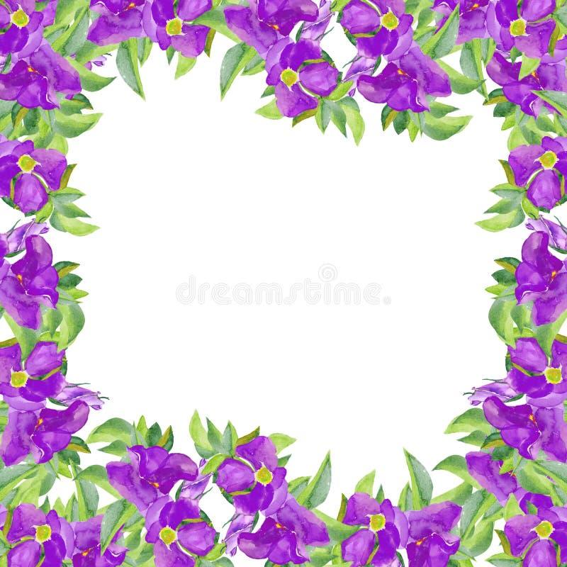 watercolor Blaue Rosen lokalisiert auf weißem Hintergrund Schöne von Hand gezeichnete Illustration für ursprünglichen Entwurf von stock abbildung